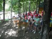 Wycieczka do Parku Leśnych Niespodzianek